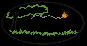 logo_ecg